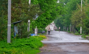 Спецпроект «53 улицы»: ул. Красилова