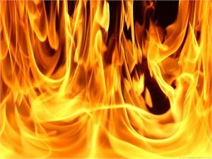 На пожаре в Боровичском районе погиб человек