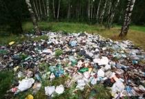 В Мошенском районе жалуются на свалку бытовых отходов