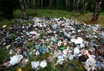 В Солецком районе несанкционированная свалка будет ликвидирована