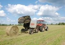 В Волотовском районе произведено около 50% всего зерна Новгородской области