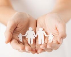 Опыт Мошенского района в соцсопровождении семей вышел на всероссийский уровень