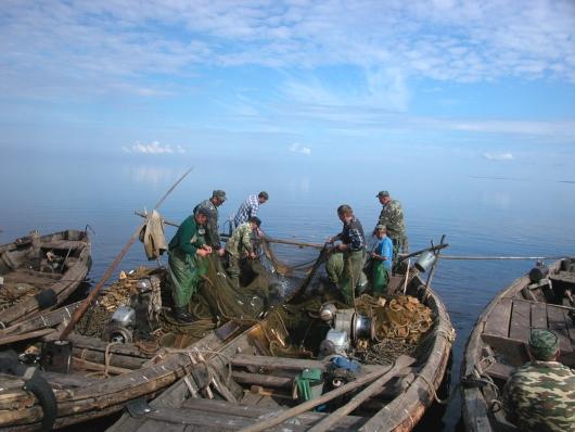 Правила рыболовства изменятся до начала весенней путины на Ильмене