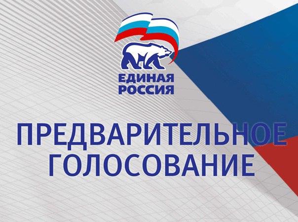 В явке по предварительному голосованию ЕР в Новгородской области лидируют Хвойнинский, Мошенской и Пестовский районы