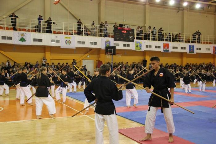 В областных соревнованиях по всестилевому каратэ и кобудо будут бороться 200 новгородцев