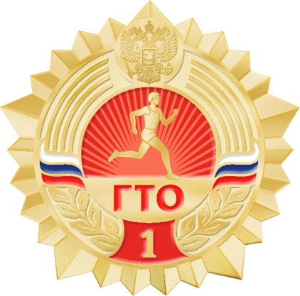 Во всех районы Новгородской области оборудуют центры для сдачи ГТО