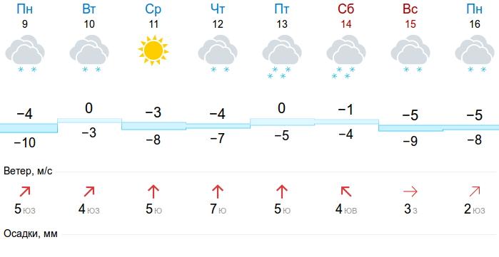 В Новгородской области значительно потеплеет к Старому Новому году