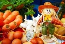 Во всех районах Новгородской области будут проверены сельхозрынки и почтовые отделения