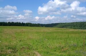 В Новгородской области 83,4% многодетных семей обеспечены земельными участками