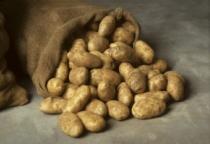 Солецкий фермер стал сертифицированным производителем элитного картофеля