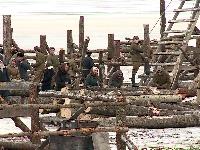 В Новгородской области проходят съемки фильма «Коридор бессмертия»
