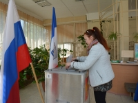 Елена Писарева: «В предварительном голосовании приняли участие более 8% избирателей»