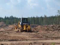 Жители Крестецкого района недовольны вырубкой леса