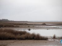 В полиции не исключают, что в Валдайском озере найдено тело мужчины, пропавшего в августе 2015-го