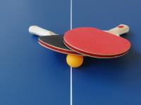 В Валдае пройдет областной чемпионат по настольному теннису среди инвалидов