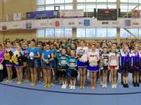 В Великом Новгороде состоялся открытый Кубок области по черлидингу