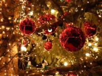 Определен счет Новгородского областного благотворительного марафона «Рождественский подарок»
