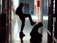 В Валдайском районе одноклассники избили школьницу