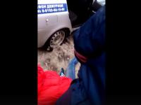 ГИБДД: «Суд оштрафовал водителя-инвалида на 500 рублей за неповиновение полицейским»