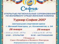В Великом Новгороде пройдут открытые региональные соревнования по волейболу «София»