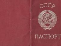 Более десятка жителей Новгородской области живут по советским паспортам