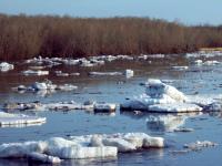В Новгородской области МЧС предупреждает о паводке и об опасности выхода на лёд