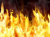 В Новгородской области за сутки сгорели два дома, две дачи, квартира и вагончик для жилья