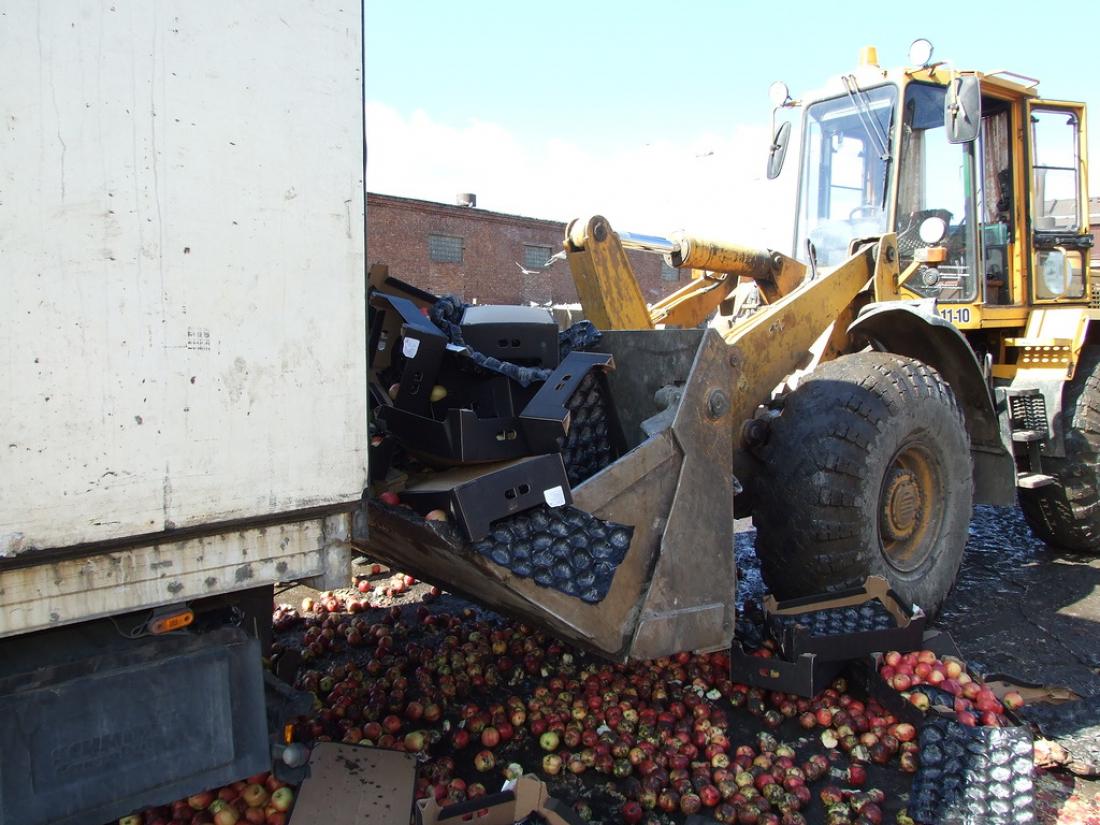 ВВеликом Новгороде уничтожили 19 тонн яблок изПольши