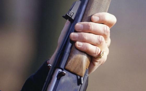 Нетрезвый шофёр направил наинспектора ДПС ружьё ибыл схвачен