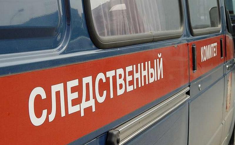 Нетрезвый шофёр сбил на«зебре» вВеликом Новгороде четырех детей