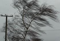 Новгородские энергетики восстанавливали электроснабжение после снегопада в шести районах области