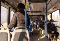 Что бывает, когда общественный транспорт становится бизнесом