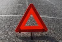 Водитель погиб от столкновения легковушки с лосем в Новгородской области