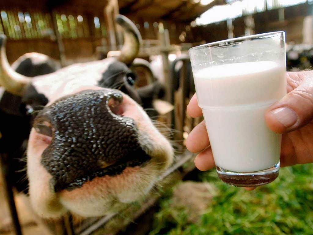 В Великом Новгороде прошел первый съезд производителей молока со всей области