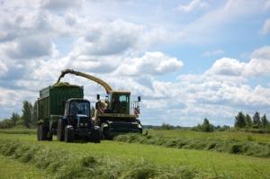 Старорусский район лидирует по объему скошенных трав