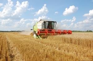 Новгородские инженеры создали устройство, ускоряющее рост сельскохозяйственных культур