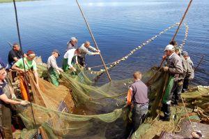 В Великом Новгороде состоялось заседание областного рыбохозяйственного совета