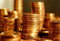 Финансовый директор ООО «Новгородские теплицы» обвиняется в сокрытии денежных средств предприятия
