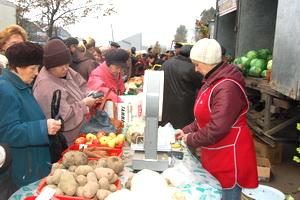 В Великом Новгороде проведут «Агропромышленную неделю – 2012»