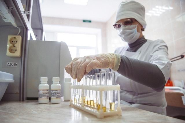 Владимир Путин поручил правительству оказать дополнительную поддержку регионам для выплат медикам