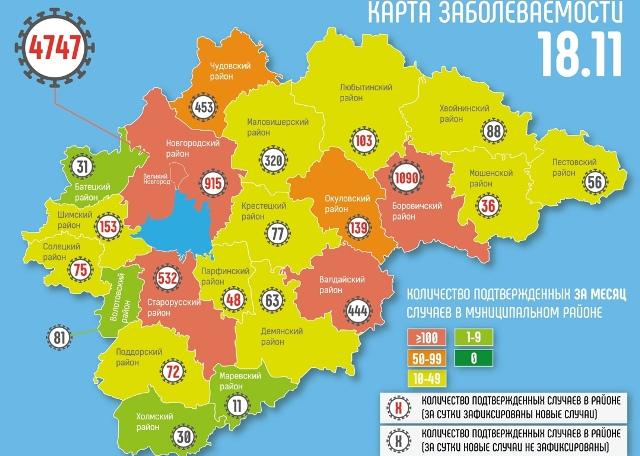 В Новгородской области за сутки новые случаи COVID-19 подтвердились на территории 11 муниципалитетов