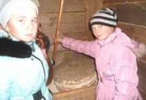 Поддорские школьники мололи зерно в жерновах