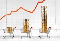 На «горячую линию» поступило 12 жалоб от новгородцев о повышении цен на продукты