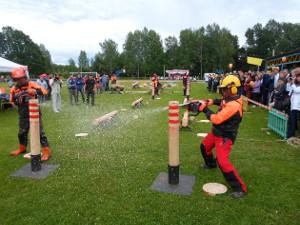 Новгородские лесорубы будут соревноваться с тысячей коллег