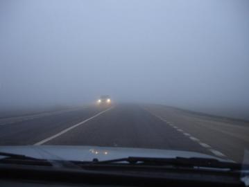 11 человек погибли с начала года в Новгородской области в ДТП с транспортом юрлиц