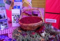 Маловишерский пирог победил на ярмарочном конкурсе в Чудове