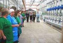 Сергей Митин посетил праздник «Первого огурца» на тепличном комбинате в Трубичино