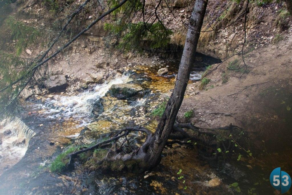 Река Понерётка сначала «ныряет» в пещеру, затем течёт 1300 метров под землёй и выходит на поверхность, чтобы соединиться с Мстой