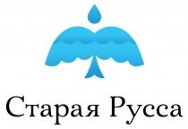 Новый опрос: нравится ли вам логотип Старой Руссы, предложенный студией Артемия Лебедева
