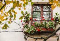 Новгородская область в лидерах по удешевлению вторичного жилья